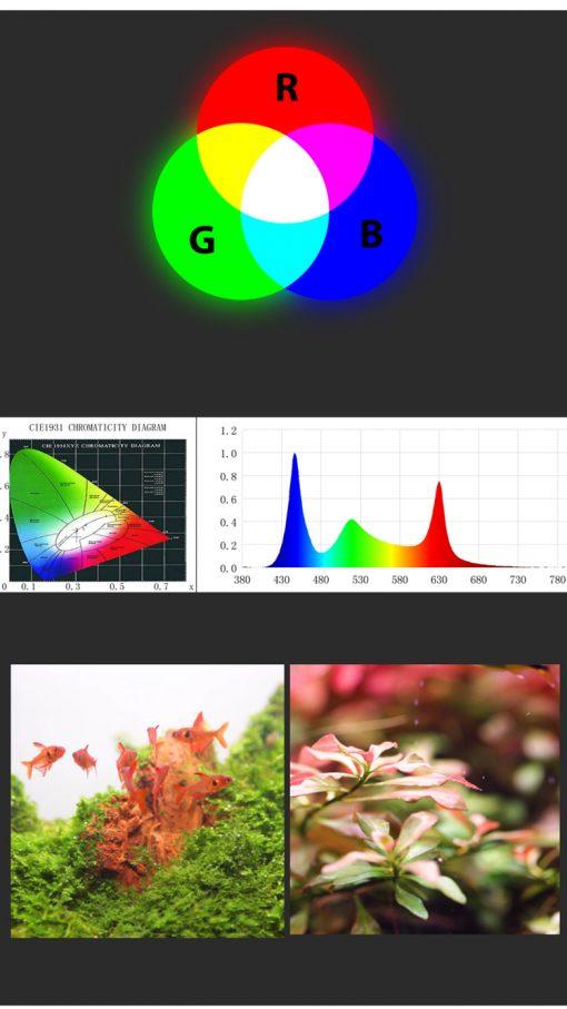 Chất lượng ánh sáng và pha màu của đèn WRGB CHIHIROS