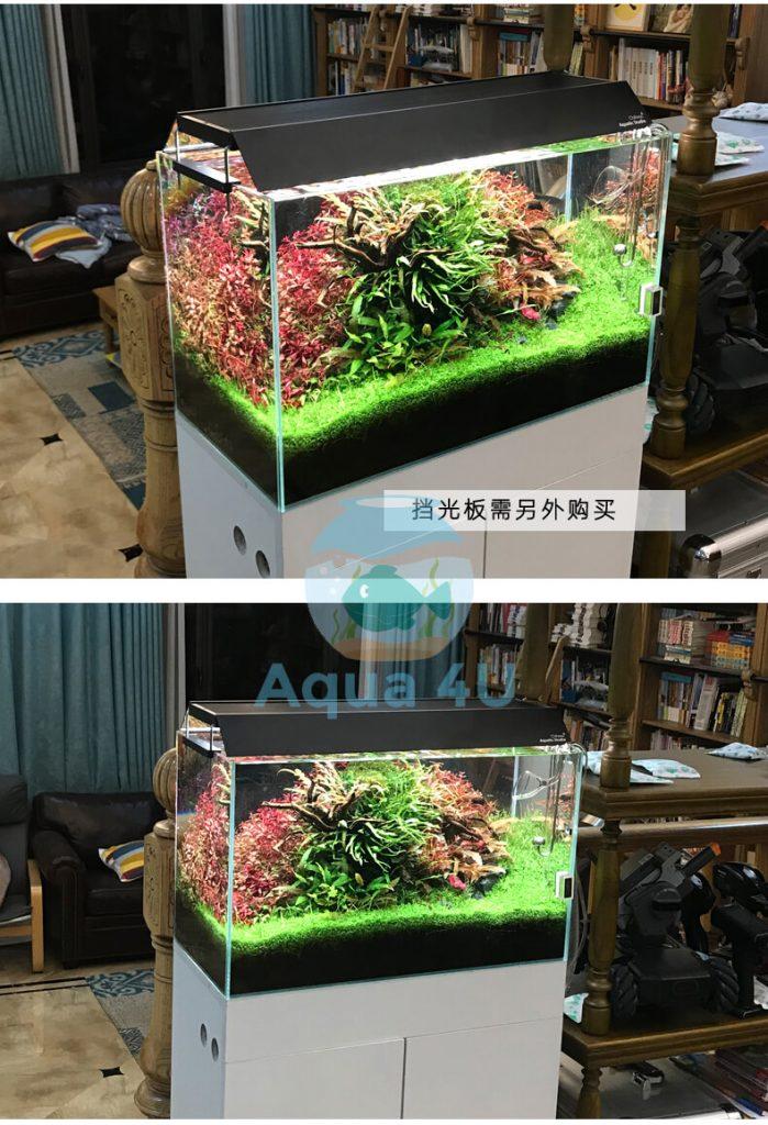 Bể thủy sinh lên màu cây khi dùng đèn chihiros wrgb 2