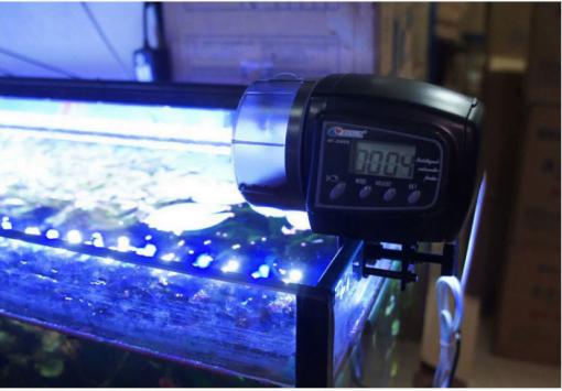 Sử-dụng-máy-cho-cá-ăn