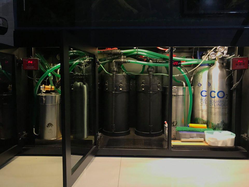 hệ thống lọc hồ thủy sinh