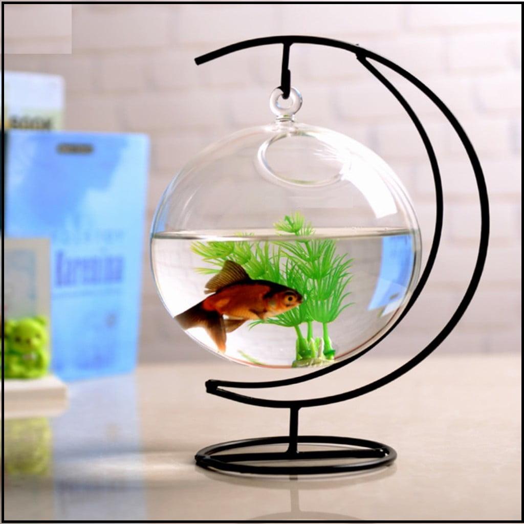 bể cá mini dạng treo