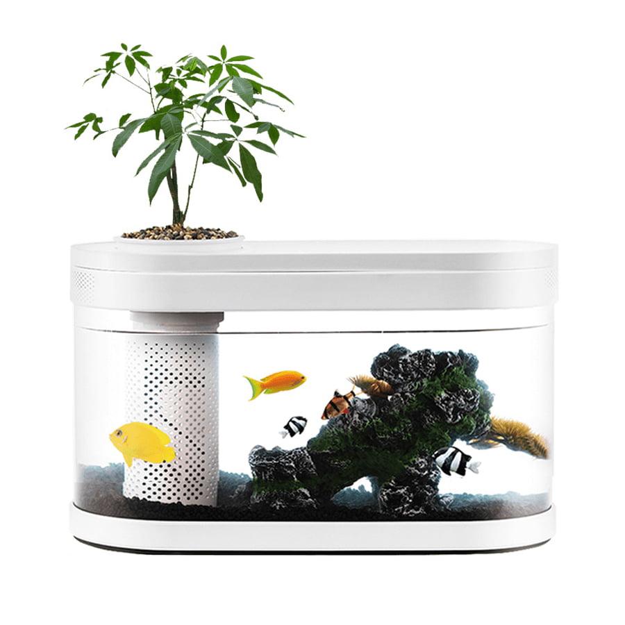 bể cá mini xiaomi