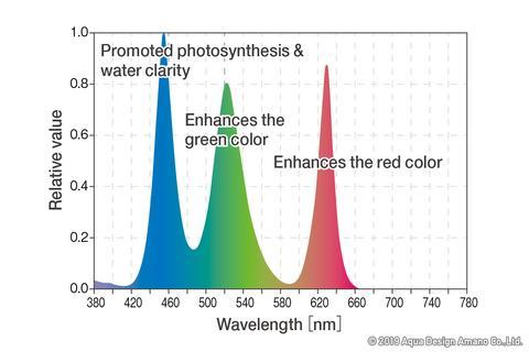 Biểu đồ quang phổ đèn ADA