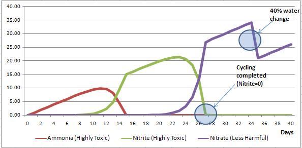 Biểu đồ nghi chép lại nồng độ của Amoniac, Nitrit và Nitrat