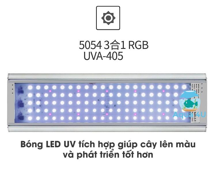 Bóng LED RGB-UV của đèn