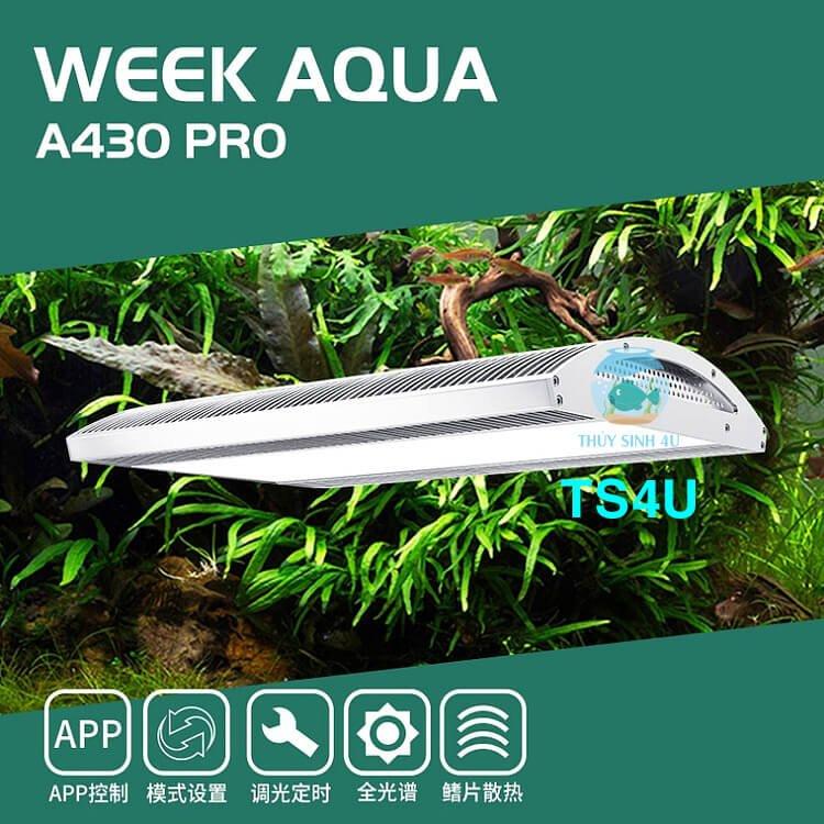 Đèn Week A430 PRO