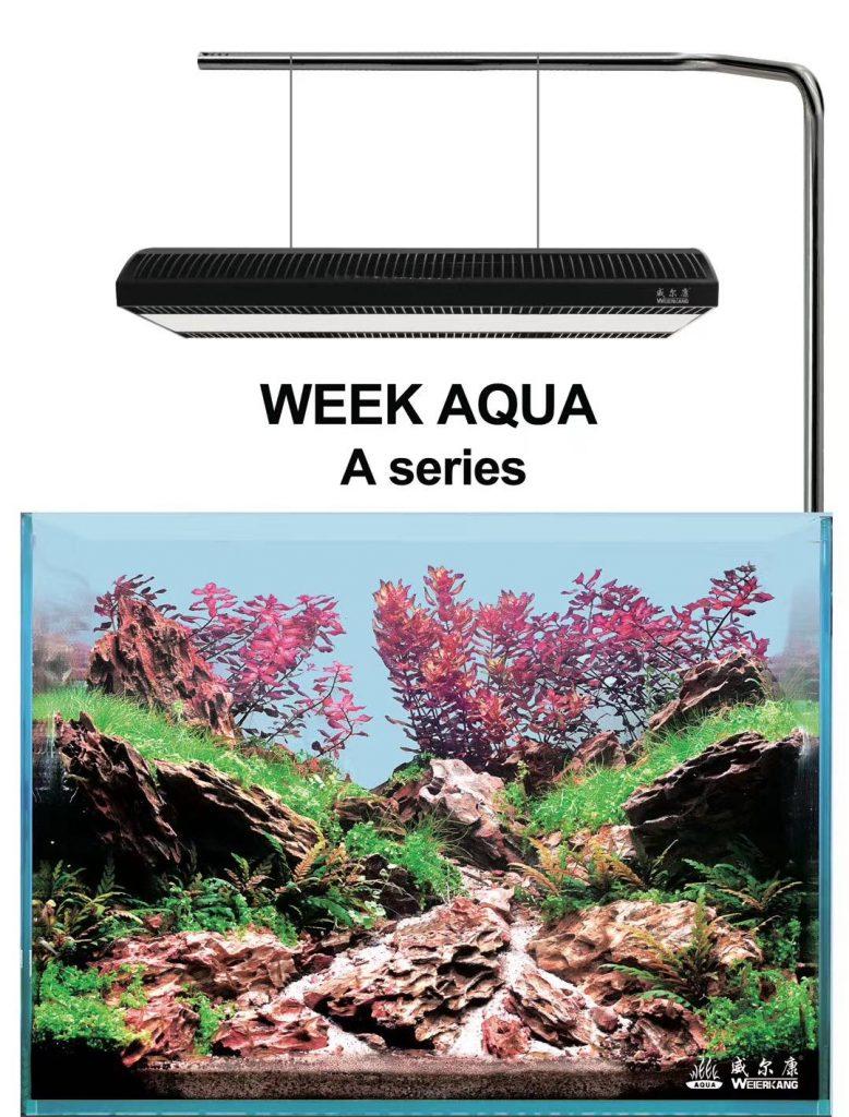 Đèn Week A430 Pro thế hệ mới