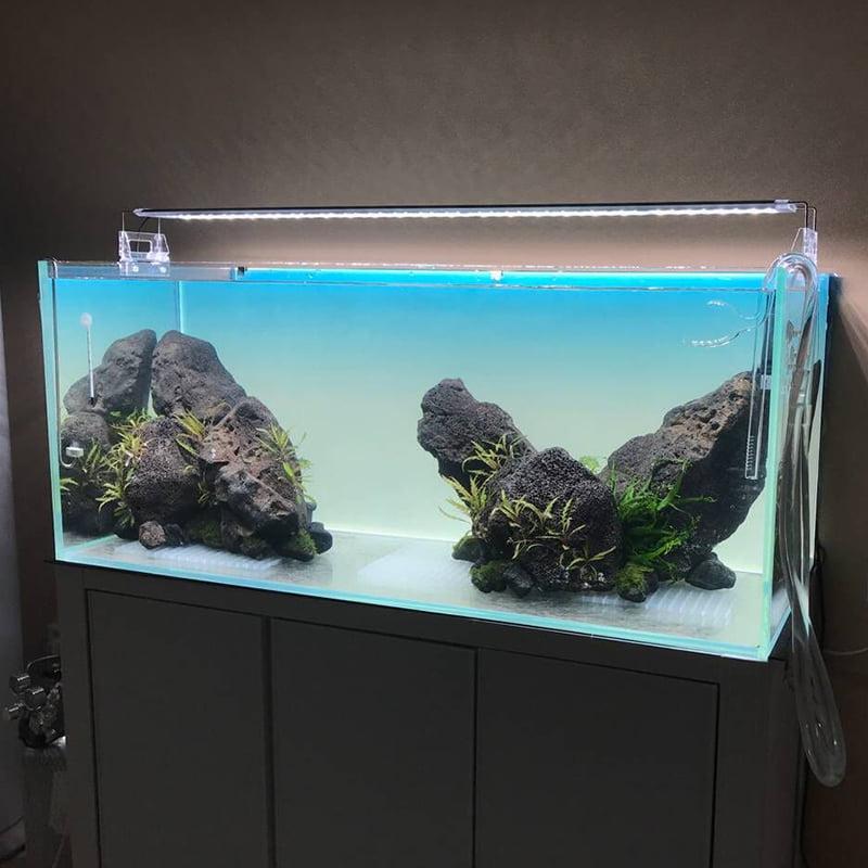 Light Screen YBB giá rẻ