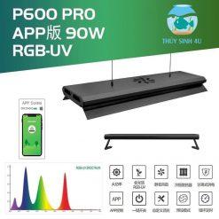 Week P600 Pro