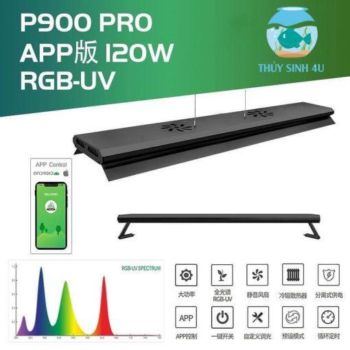 Week P900 Pro