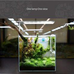 Đèn WEEK S SERIES trên bể thủy sinh mini