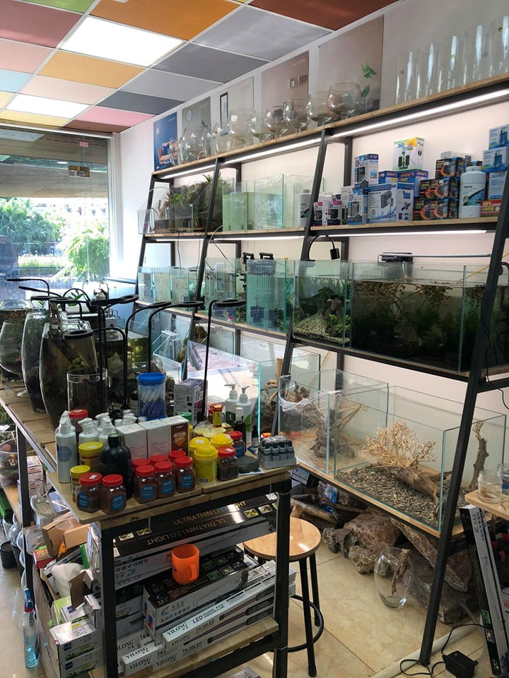 Cửa hàng Đức Vương Aqua