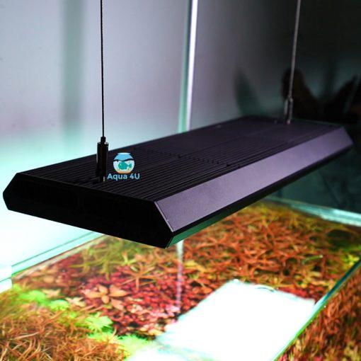 Đèn chihiros Vivid 2 trên bể thủy sinh