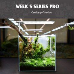 Đèn Week S Pro