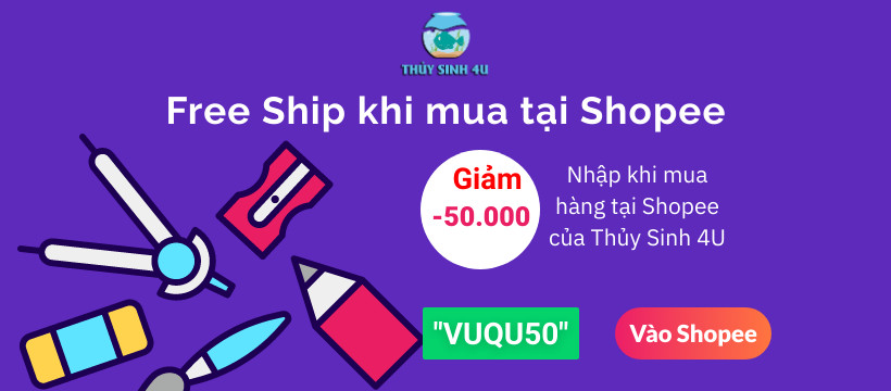 Giam 50k thuy sinh, ca canh
